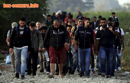 Не ги допускайте бежанците изобщо! Ще запалите Балканите! Играете си с огъня!